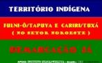 Especula��o Imobili�ria do DF quer acabar com reserva ind�gena da Asa Norte. <br/> <br/> Palavras-chave: nativos, �ndios, terra, especula��o, desigualdade, sociedade, poder.