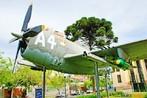 Ca�a Thunderbouth utilizado pelo Ex�rcito brasileiro durante a II Grande Guerra. <br/> <br/> Palavras-chave: museu do expedicion�rio, segunda guerra, ca�a Thunderbouth, poder, pol�tica, ideologia.