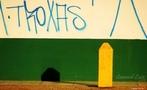 Brasil - Segundo o autor da foto �Notem que as cores s�o as da bandeira do Brasil...Infelizmente a sociedade se deteriora por si pr�pria...� <br/> <br/> Palavras-chave: poder,pol�tica, ideologia.