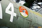 Detalhe da imagem grafada no avi�o Thnderbouth com o grito de guerra da FAB � For�a A�rea Brasileira. <br/> <br/> palavras-chave: FAB, museu do expedicion�rio, segunda guerra, poder, pol�tica, ideologia, Multimeios.