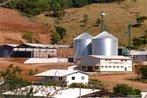 Produção - foto de produção agrícola do MST - Coagri/Paraná - Foto Douglas Mansur 21/07/2006 <br/> <br/> Palavras-chave: direito, cidadania, movimentos sociais, MST, latifúndio, arte, engajamento social.